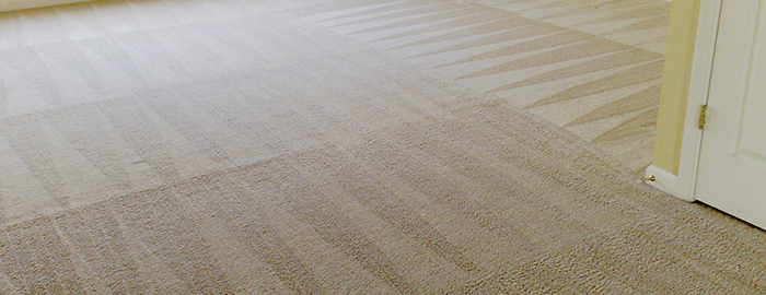 mesquite tx carpet cleaners